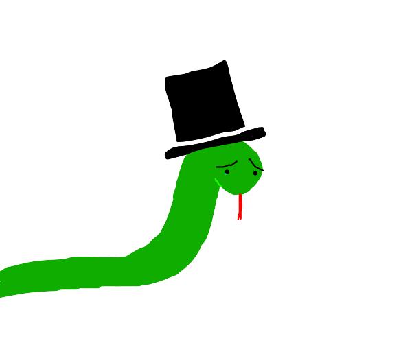 Sad top hat snake