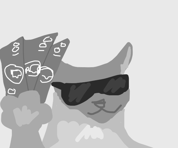 cat with alot of money and swag .