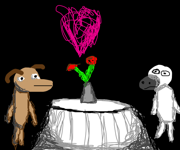 A dog and sheep in love