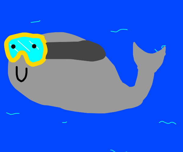 whale with facemask