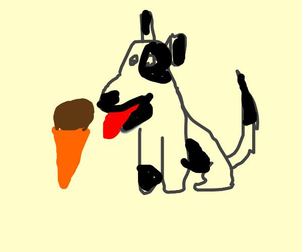 Doggy eating Ice Cream