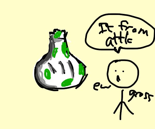 Garlic from the Attic