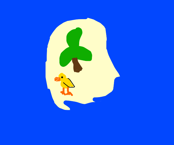 Duck on a tropical island