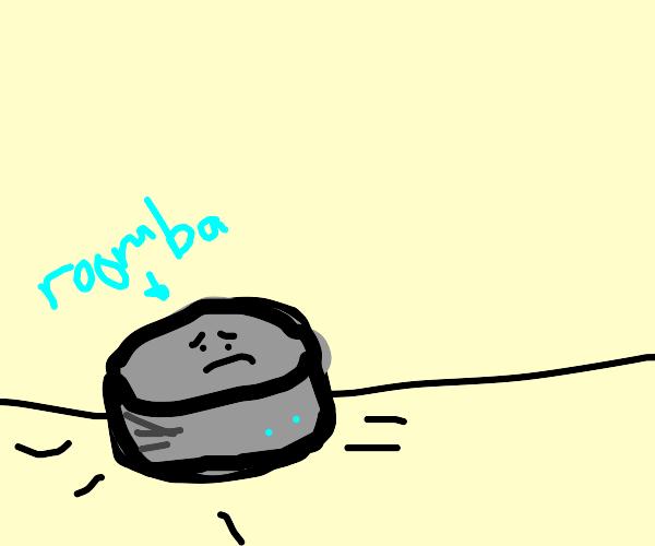 roomba is sad