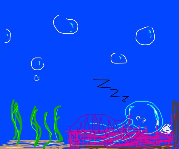 sleeping jellyfish