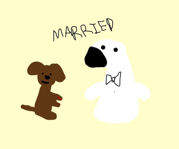 Dog marries polar bear.