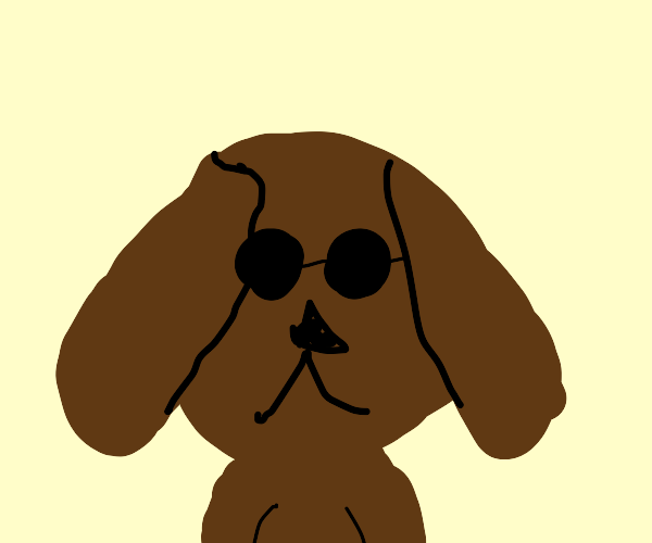 A Dog with Sun Glasses