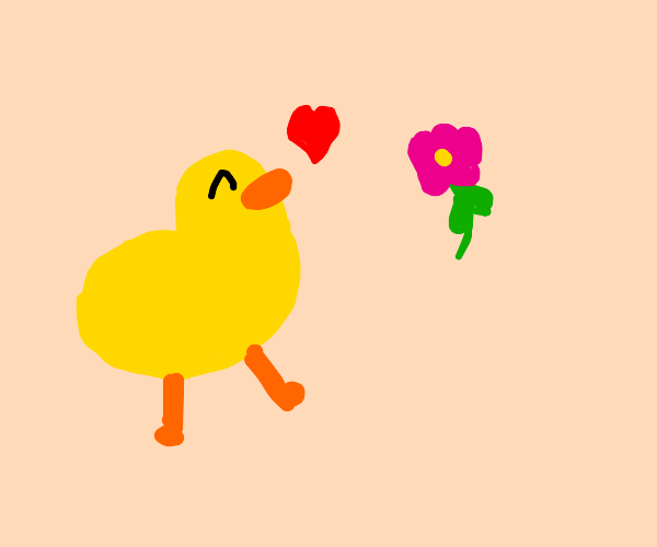 duck happy about flower