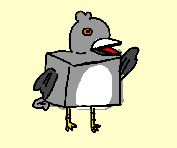 Square Pigeon
