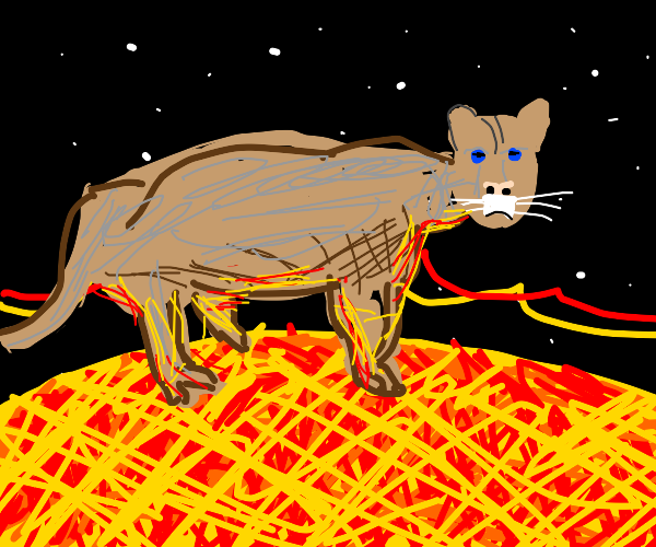 Cougar on a Star