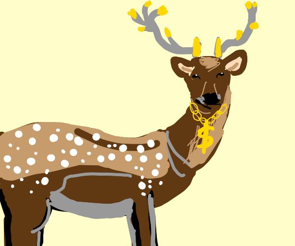 rich deer