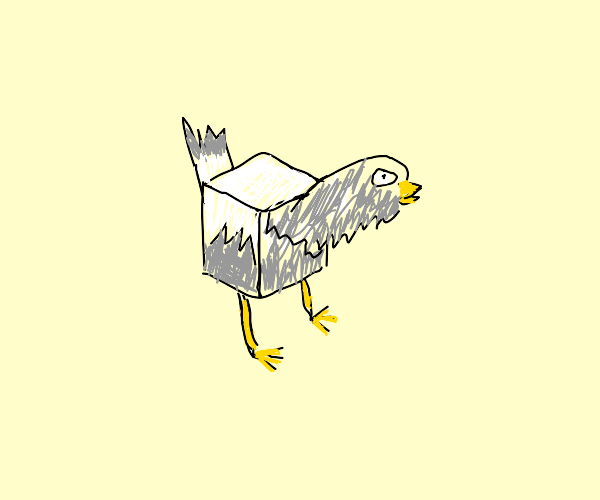 A cube pigeon