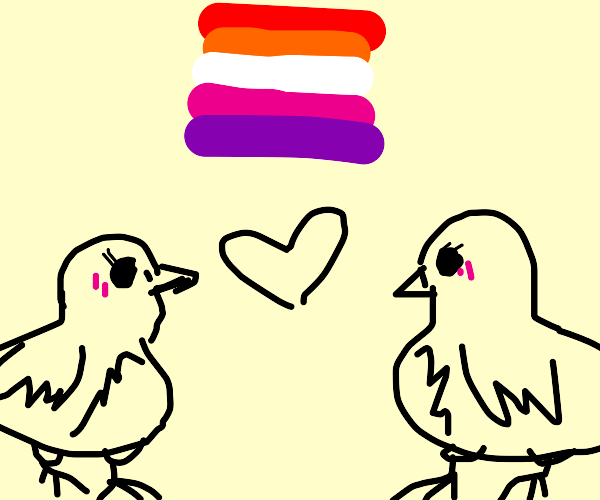 lesbian pigeons in love