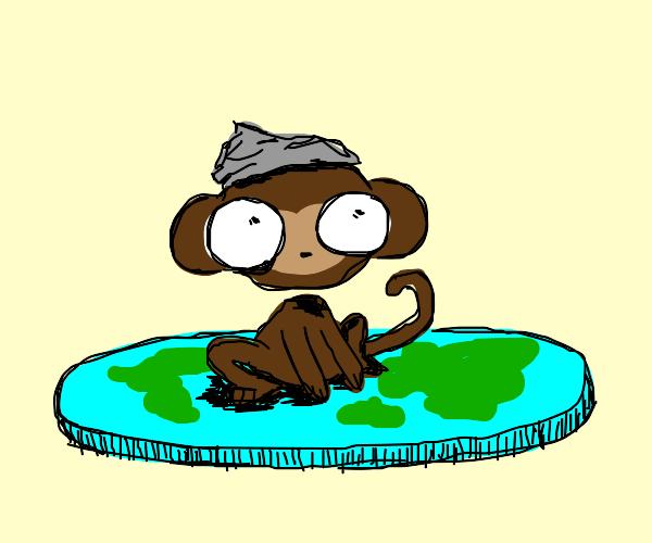 Monkey conspiracy theorist