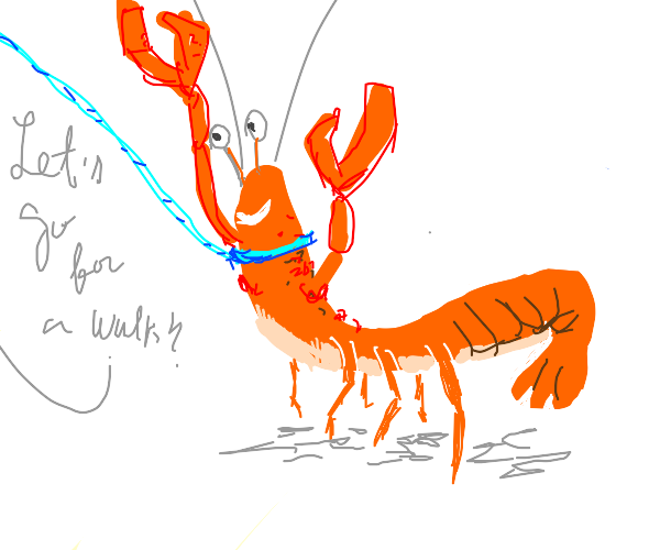 A well-behaved pet lobster