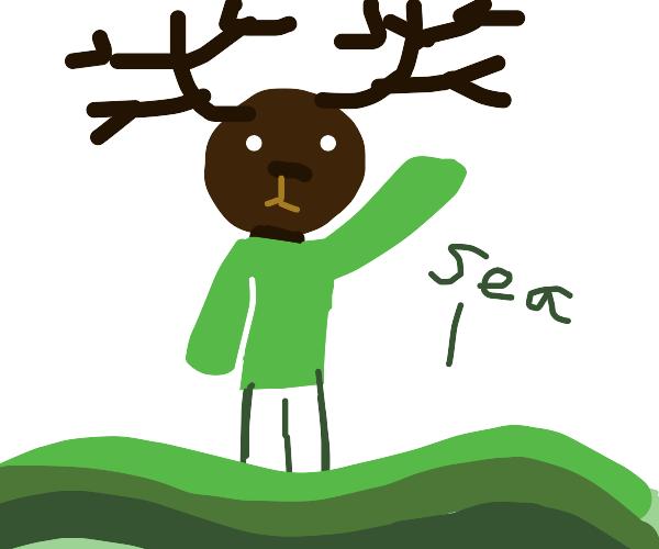 Deer boiiii in sea