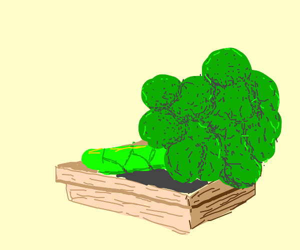 broccoli in a wooden punnet