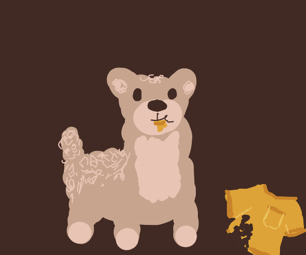 llama eats man's clothes