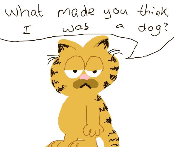 Garfeild dog thing