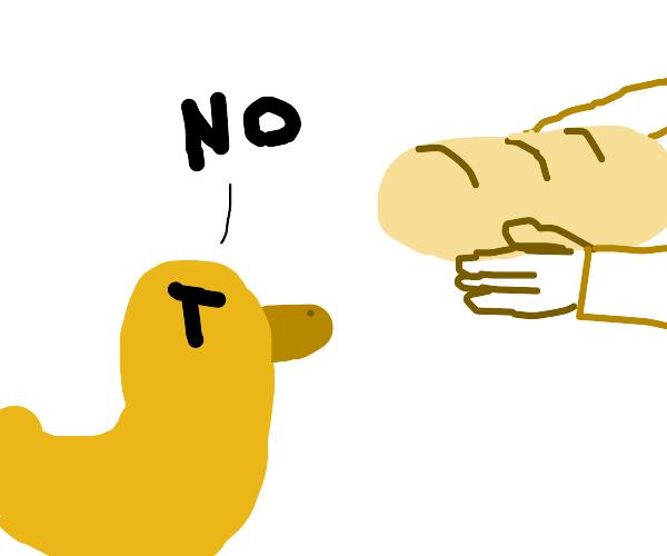 duck doesn't need any bread