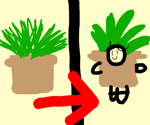 a potted plant but it's human