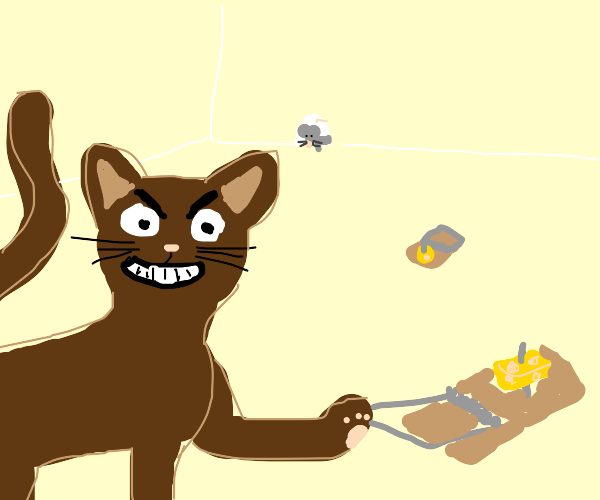 evil cat setting traps