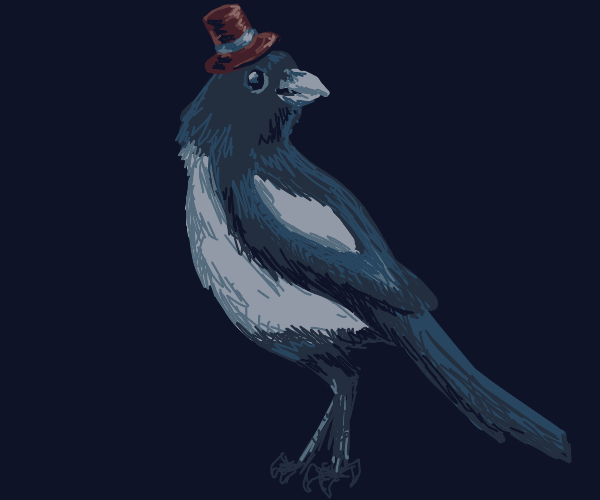 A magpie wearing a top hat