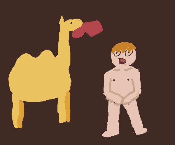 Camel steals man's valuables