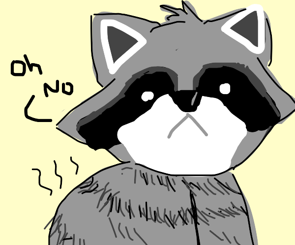 fat raccoon regrets eating too much