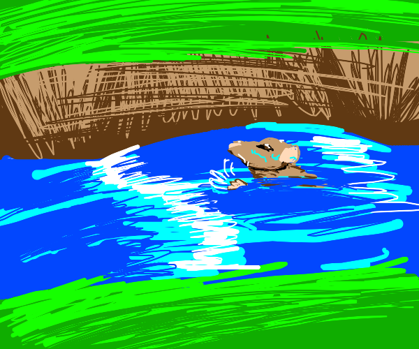 rat in a river