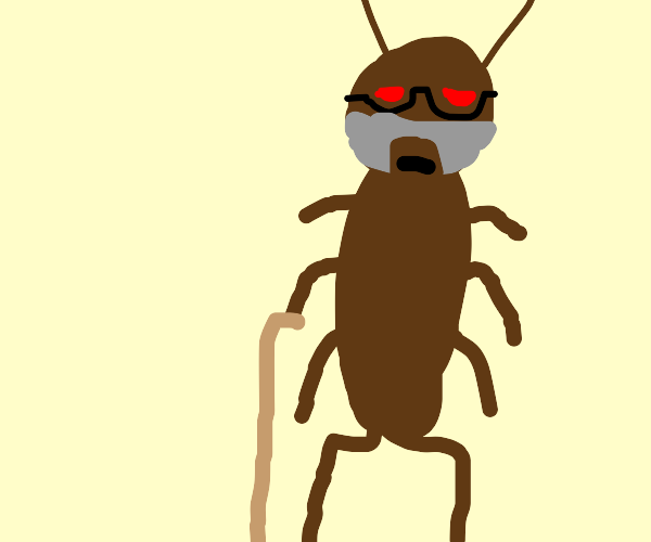 old cockroach