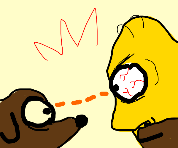 homer simpson looks intensely at dog