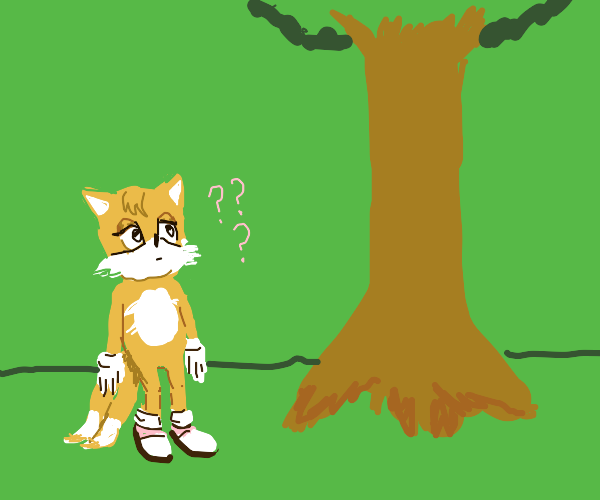 Tails finds a tree and is confused