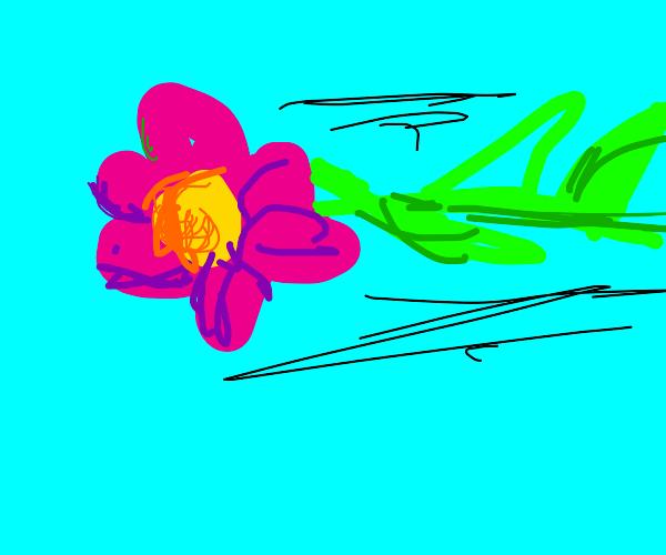 Flower airplane