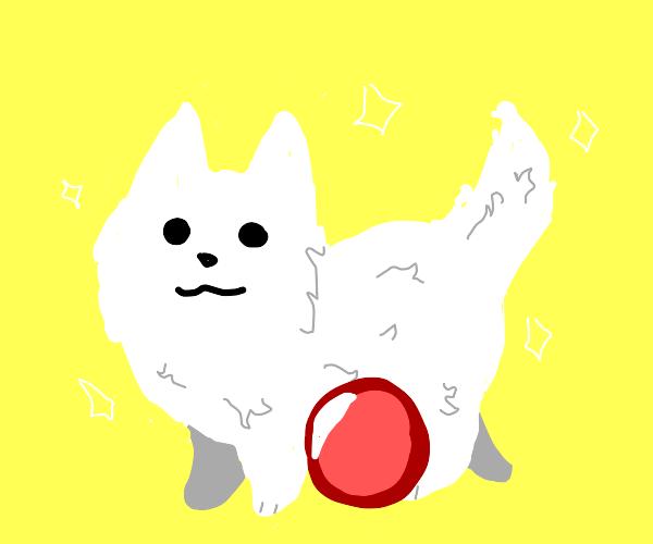 toby fox dog