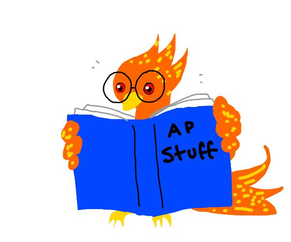 phoenix bird reading a book called ap stuff