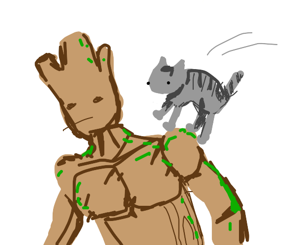 Cat jumps on groot