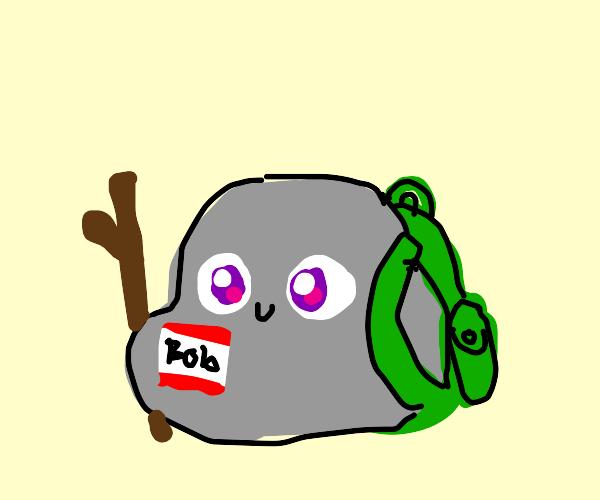 A rock named Bob has an adventure