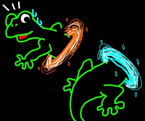 Lizard opens a magic portal