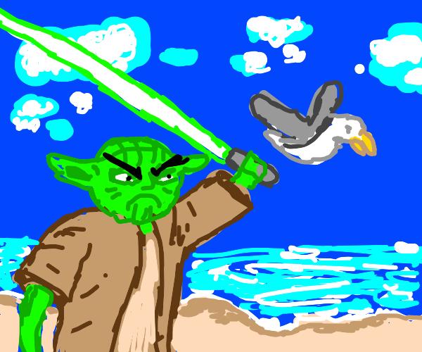yoda HATES seagulls