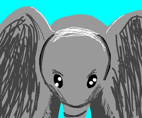 Awww!  A cute widdle baby elephant!