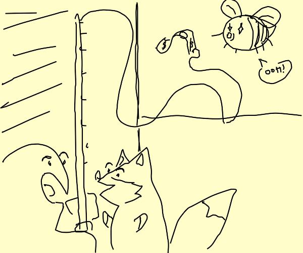 Fox and human fishing a Bee