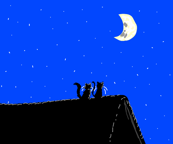 Two cats on a roof staring at the moon