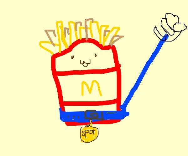 pet mcdonalds fries