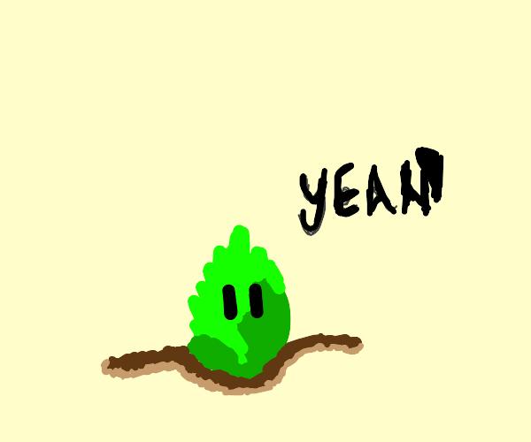 Lettuce screaming YEAH