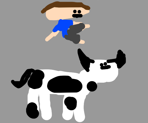 guy floats above cow