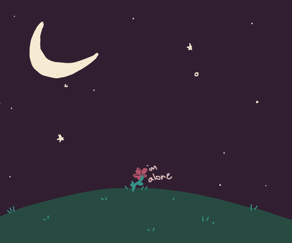 Flower alone in the night
