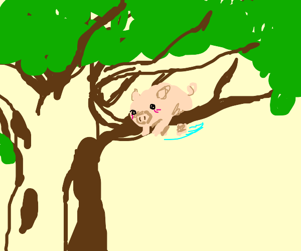Adorable Piggy Boi in tree looking 4 help