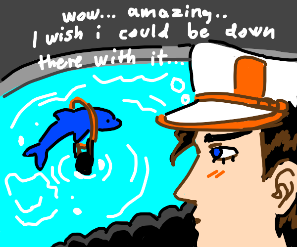 jotaro looking at a dolphin admiring the site