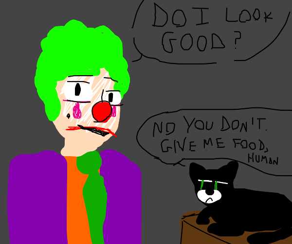 Cat questions your Bootleg Joker costume
